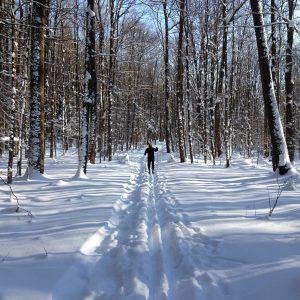 18Cross Country SkiingCynthia Hauschild Onondaga County