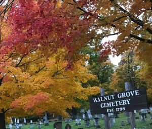 81Walnut Grove Cemetery Onondaga Hill South Ave.Jerilyn Payne Onondaga County