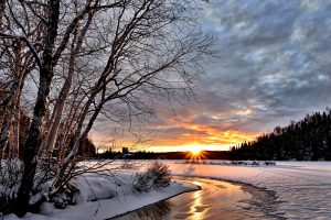 winter-landscape-2995987_1920