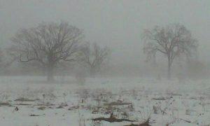 14 Late November Mist Kelly Mercurio Herkimer County