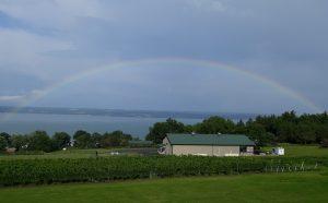 47Cayuga Lake rainbowPenny Goodsell Seneca County