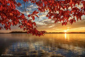 16Lake Delta Autumn Sunset Susan Campbell Oneida County