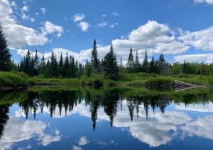 38Reflections on the Moose RiverSusan O'Meara Oneida County