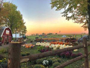 11Pumpkin Farm Chris MauroOnondaga County