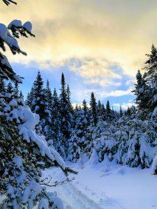 50Evening skiMeg MulvihillHerkimer County