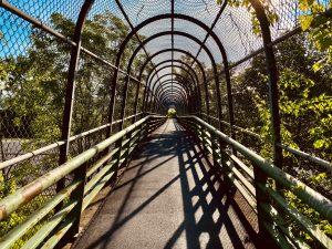 2A Cage of Summer's LightBrendan Todt Onondaga County