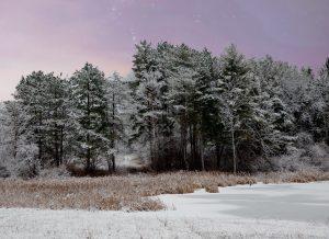 97Evening snowAnn OliverOnondaga County