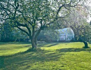 20Spring Orchard Roy Senn  Oneida County