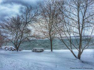 73Seneca LakeDonna Everhart Seneca County