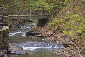 35Filmore Glen State Park, Moravia NYLinda Chapman Cayuga County