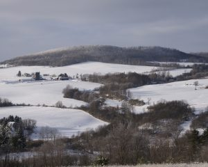 17Virgil Creek Valley and the Virgil HillsBard V Prentiss Cortland County