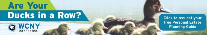 Ducks in a Row Web Ad