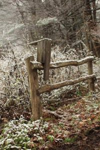 119 Winter BeautyShelli Butler Oswego County