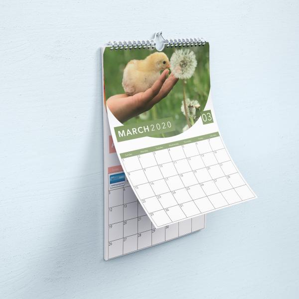 FNL Calendar