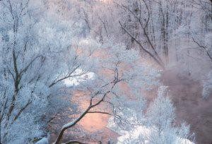121 Frost RiverRoy Senn Oneida County
