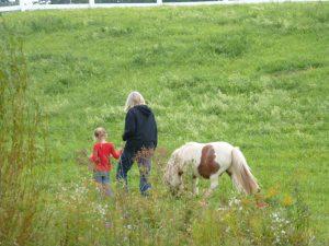 60 Springtime Stroll Jane LaSure Madison County