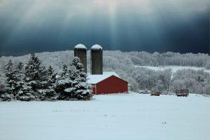 111 After the snowAnn Oliver Onondaga County
