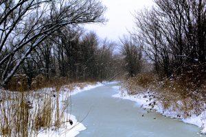 138 Stream of LightFrederick Mills Onondaga County