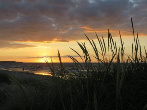 103 Sunset over Lake OntarioJeanne Grace Wayne County