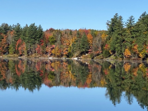 45 Calm ReflectionTracy D Herkimer County