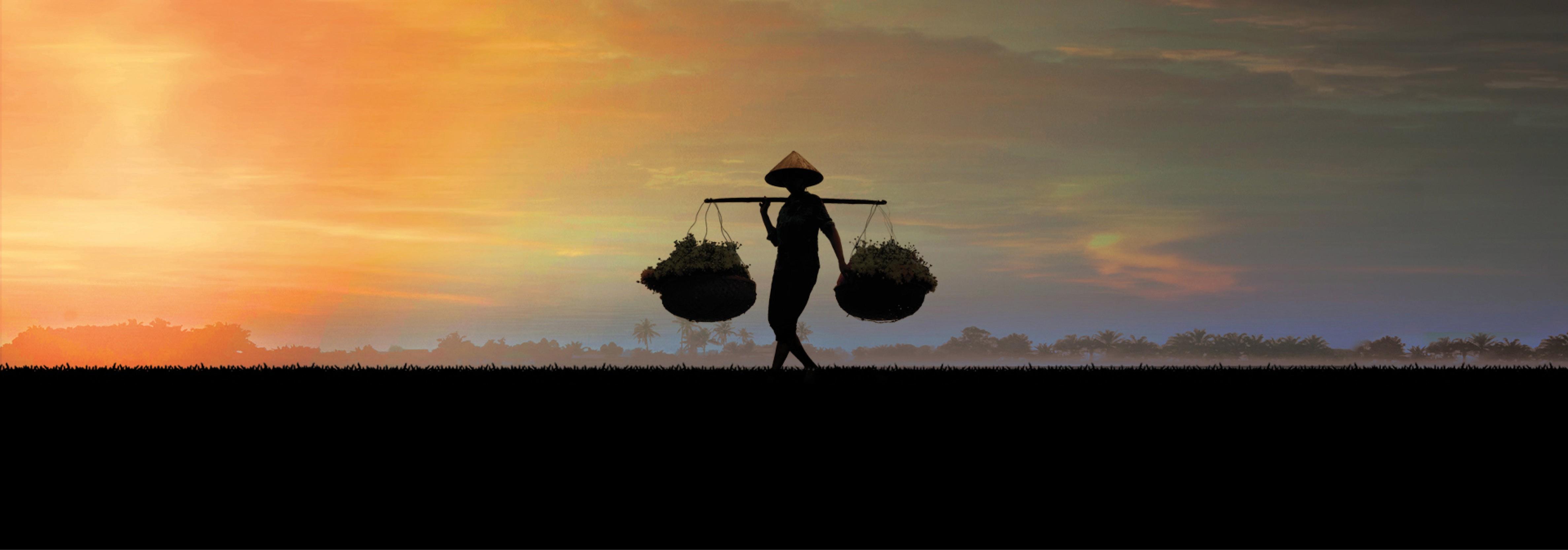 Vietnam_slider_3