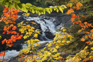 40Fall water Jim Hassett Lewis County