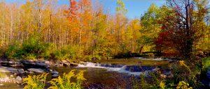 46 Stream Jim Kenty Madison County