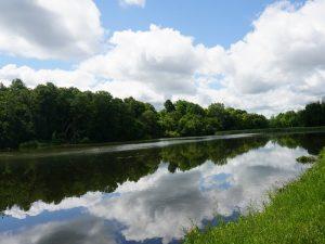 33Reflections of a summer dayGrace Carroll Onondaga County